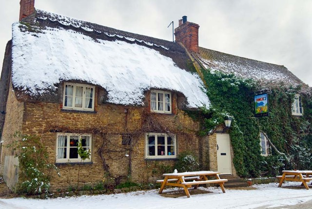 Blue Boar in the Snow